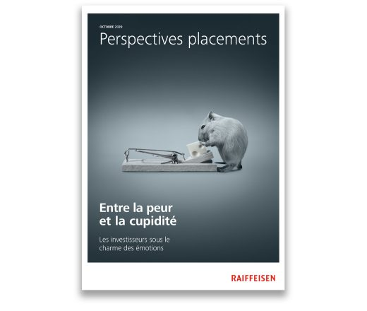 Perspectives placements octobre 2020